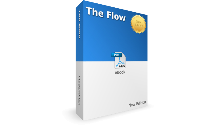 The Flow - New Edition