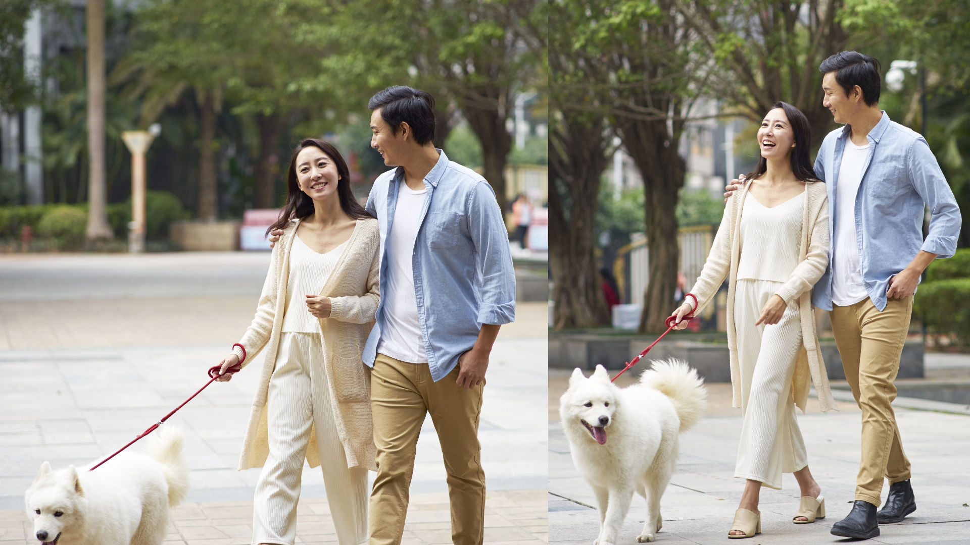 When she is attracted to you again, use the dog to do something romantic